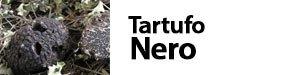 Tuber melanosporum - Tartufo nero